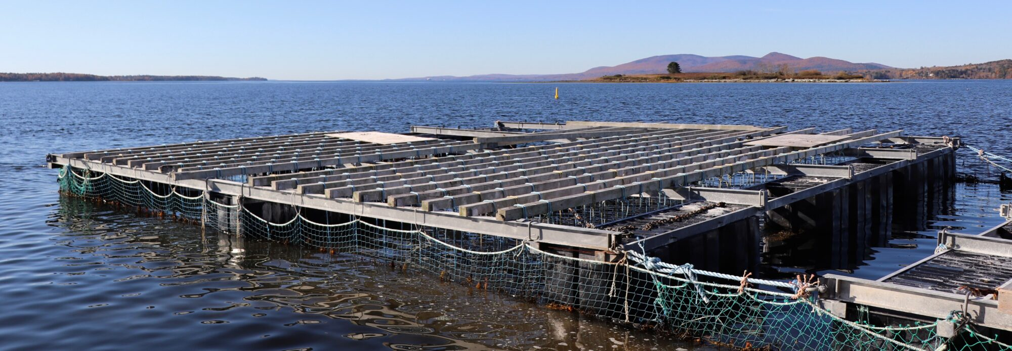 Maine Aquaculture Association